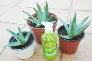 Gel Aloe Vera Corpore Sano