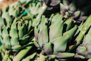La alcachofa y sus propiedades