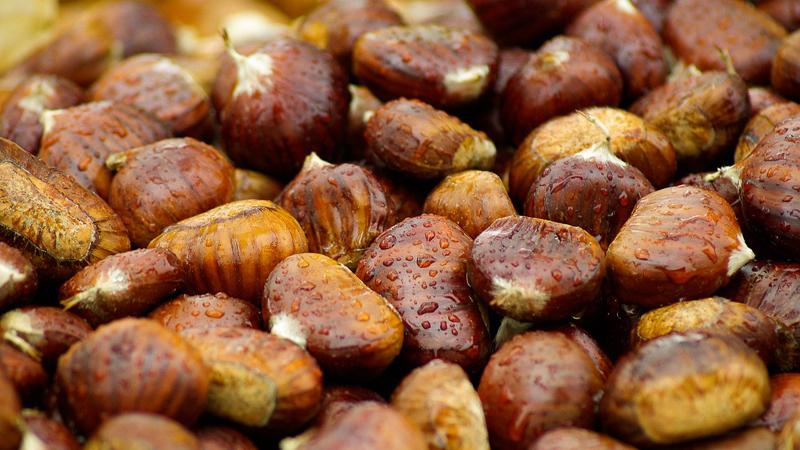 Propiedades de las castañas, el fruto del otoño